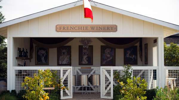 Visit Frenchie Winery Experience