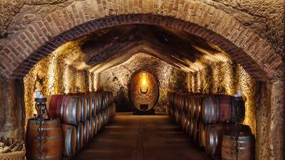 The Caves of Buena Vista Winery
