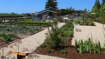 Deloach Vineyards Garden - Farm to Table